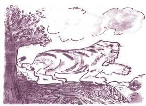 tigre 300x218 L'automne : saison de l'élément métal