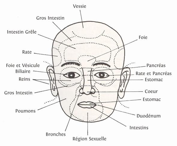 visage organes medecine chinoise Des petits gestes qui en disent long